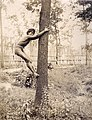 """Igorrote climbing tree."" Philippine Reservation, Department of Anthropology, 1904 World's Fair.jpg"