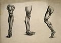 Écorché legs; three figures. Pencil and ink wash drawing, af Wellcome V0008228.jpg