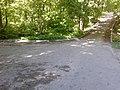 Асфальтированная дорожка в Архиерейской роще.jpg