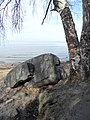 """Валун """"Киви"""" на берегу Финского залива.jpg"""
