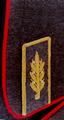 Ген шин рф.png