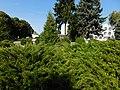 Група могил воїнів в центрі Борзни 04.jpg