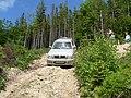 Испытания проходимости в районе Гребенова - panoramio.jpg