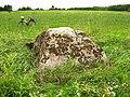 Камень на доўгеньках якубаўскі. Якубаўцы (03).jpg