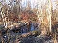 Канал в Приоратском парке.JPG