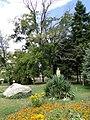 Копривщица - panoramio (25).jpg