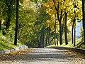 Міський сад, осінь-2.JPG