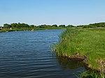 Озеро Сорока гідрологічний заказник.jpg