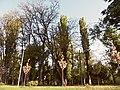 Природа у Міському Саду.jpg