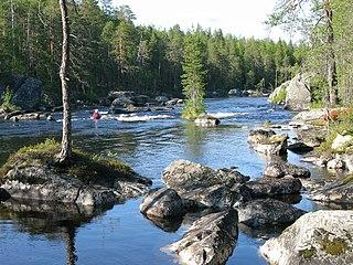 Kostomuksha Nature Reserve