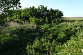 Речка Мечетка. Вид в северном направлении - panoramio.jpg