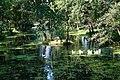 У Буштинському парку.jpg