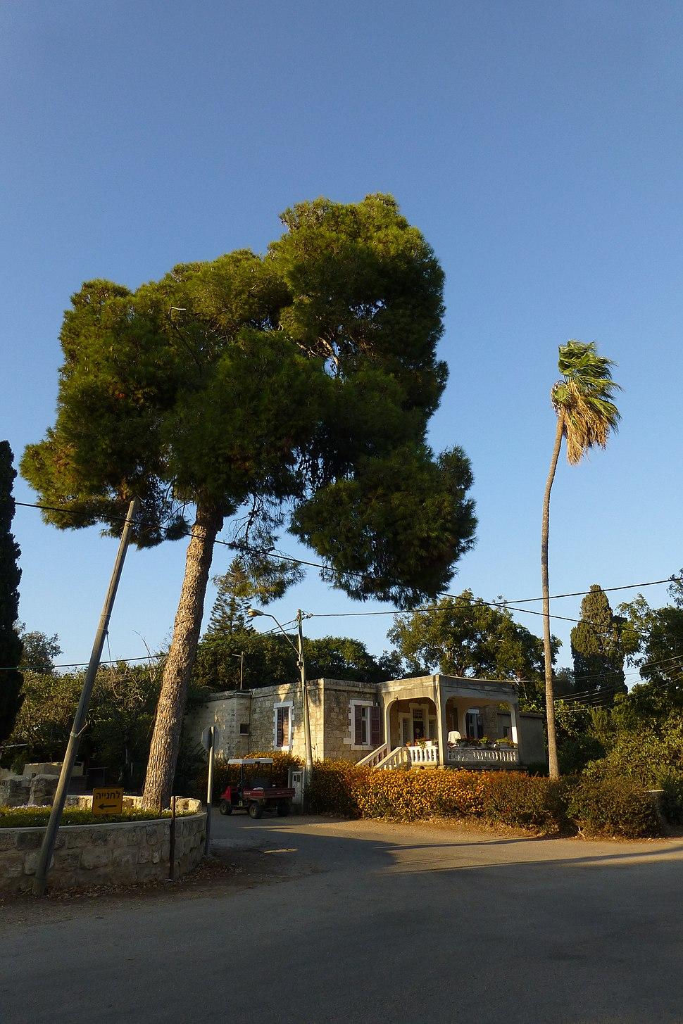 הגליל התחתון - בית לחם הגלילית - המתחם הטמפלרי (11)