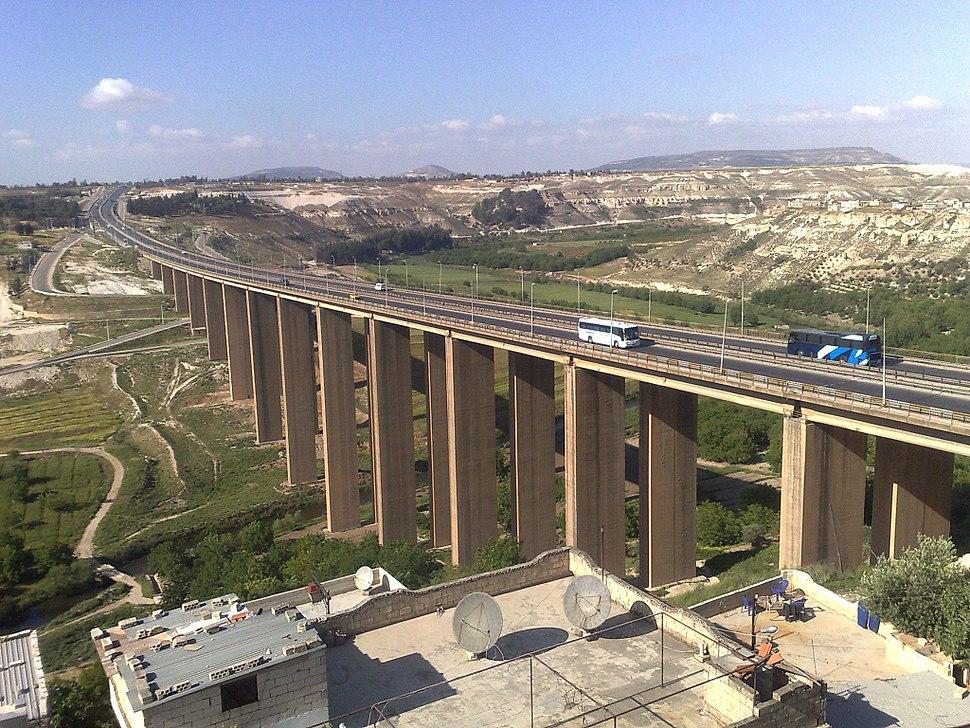 جسر الرستن الكبير