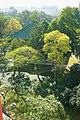 华南农业大学,美丽校园g - panoramio.jpg