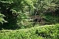 東高根森林公園 - panoramio (42).jpg