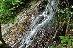 白岩の滝 - panoramio (32).jpg