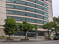 罗城 办税服务厅 - panoramio.jpg