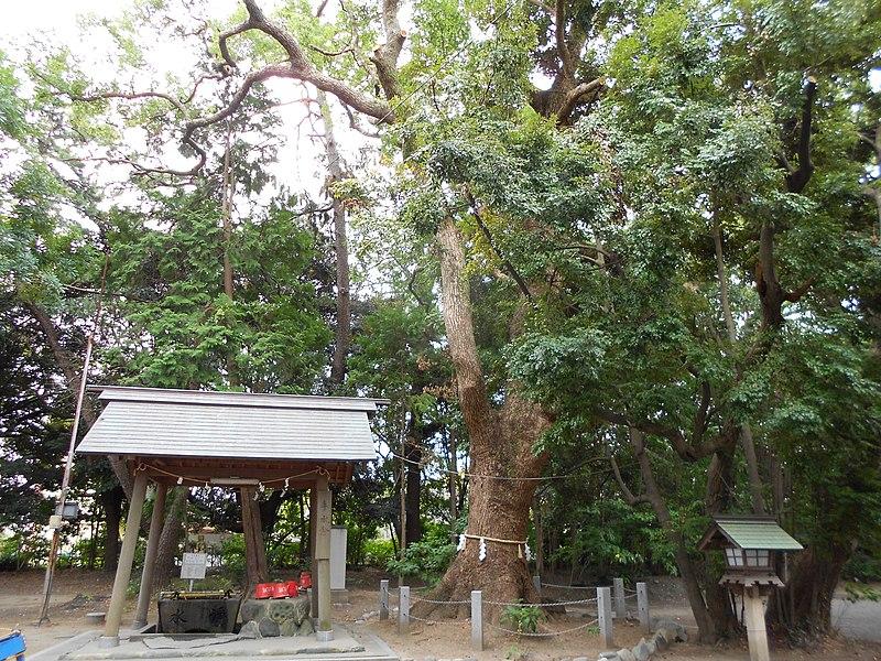 File:蒲神明宮 - panoramio.jpg