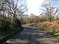 -2021-03-15 Heath Road, Crostwight, Norfolk (4).JPG
