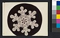 -Snow Crystal- MET DP351907.jpg
