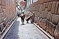 00 1558 Cusco Peru - Hochanden.jpg