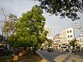 01769jfGil Puyat Avenue Barangays Bridge Taft Pasay Cityfvf 06.jpg