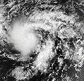 02C TERRA MODIS 30 kt 2006.jpg