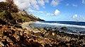 090-ilha-da-trindade 1 20111203 trindade1 2718 (32594403722).jpg