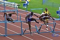 110m Helsinki 2005.jpg