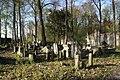 1392viki Cmentarz żydowski przy ul. Lotniczej. Foto Barbara Maliszewska.jpg