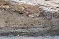 14-11-15-Ausgrabungen-Schweriner-Schlosz-RalfR-078-N3S 4061.jpg