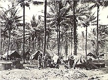 Black and white photo of soldiers working in a jungle camp alongside several artillery pieces