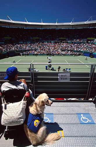 Wheelchair tennis at the 2000 Summer Paralympics - A spectator watches wheelchair tennis competition at the Olympic Tennis Arena with their disability assistance dog during the 2000 Summer Paralympics