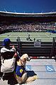 141100 - Wheelchair tennis spectator assistance dog view - 3b - 2000 Sydney match photo.jpg