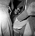 18.05.76 à l'école vétérinaire de Toulouse, opération d'un brocard jeune cerf (1976) - 53Fi893.jpg