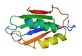 1APS PDB PROTEIN.PNG