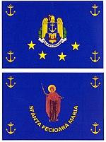 1 4 SMFN steag.jpg