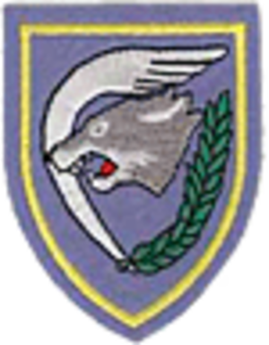 1st Wing (Belgium) - 1st Wing Badge