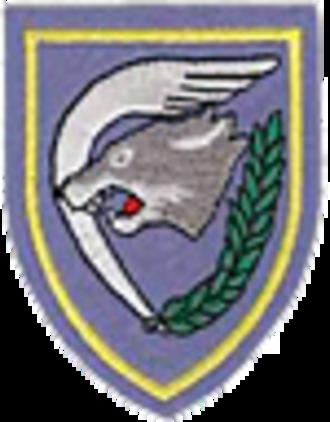 1st Wing (Belgium) - 1st Wing Badge