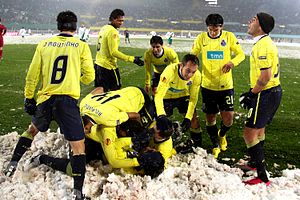 2010%E2%80%9311 UEFA Europa League - SK Rapid Wien vs F.C. Porto %2806%29