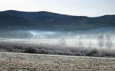 2014 Mgły nad Woliborzem.jpg