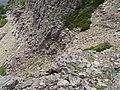 2015.07.11 14.43.00 DSCN2707 - Flickr - andrey zharkikh.jpg