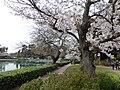 2017-03-24 Parco Centrale del Lago 28.jpg