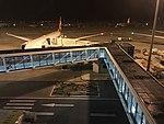 201801 Y-Shape Boarding Gate at PVG T2.jpg