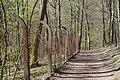 20200401Rodenhofer Schwarzwald 03.jpg
