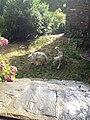 30170 Fressac, France - panoramio (1).jpg