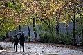 3 December 2019 Rain in Tehran.jpg