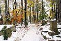 """6903vik Zakopane, cmentarz """"Na Pęksowym Brzyzku"""". Foto Barbara Maliszewska.jpg"""