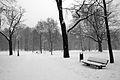 8776vik Park w Pszczynie . Foto Barbara Maliszewska.jpg